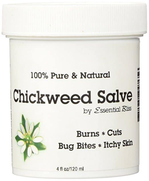 Best Ointment for Psoriasis - Essential Bliss' Chickweed Salve