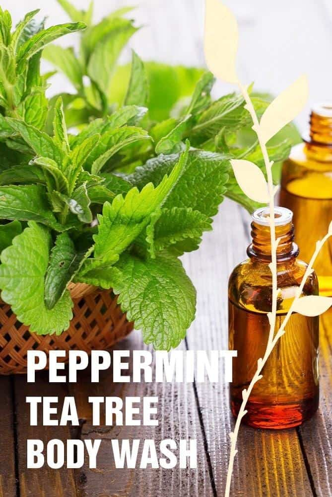 Peppermint Tea Tree Body Wash