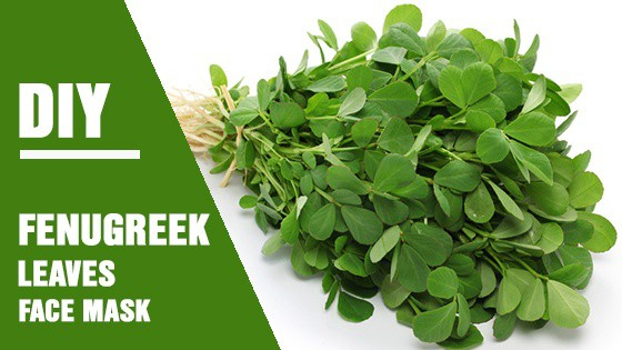 Learn how to use fenugreek leaves in creating your face mask and you'll never want to use another face mask again.