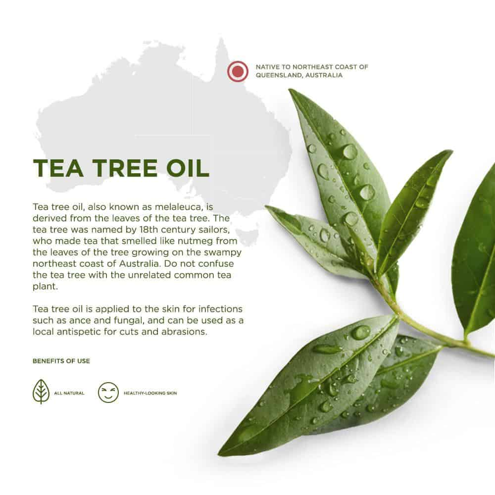 Keeva Tea Tree Oil for Acne Treatment Cream